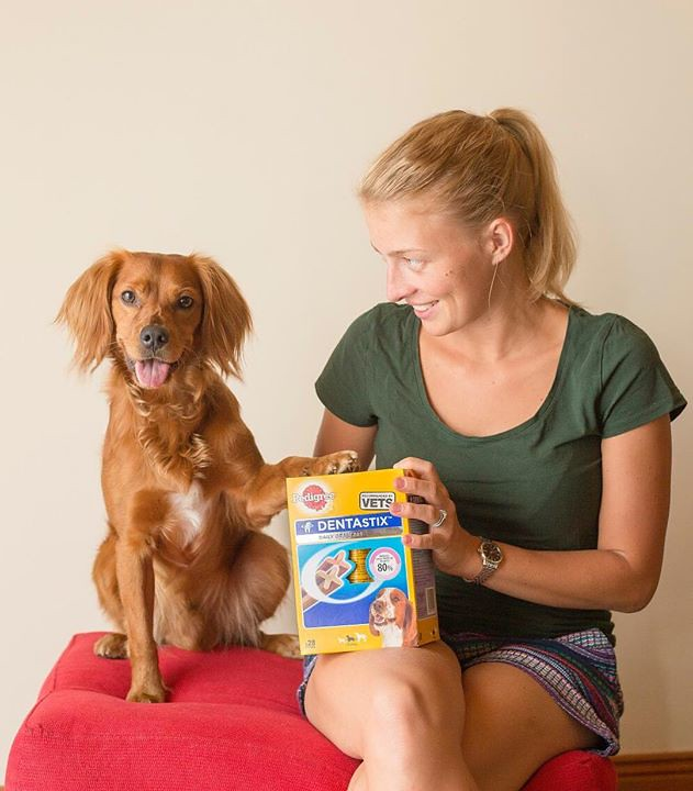 Woman and dog is holding the dentastix dog food treat seating on a red form chair